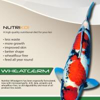 Nutrikoi Wheatgerm 15kg Medium