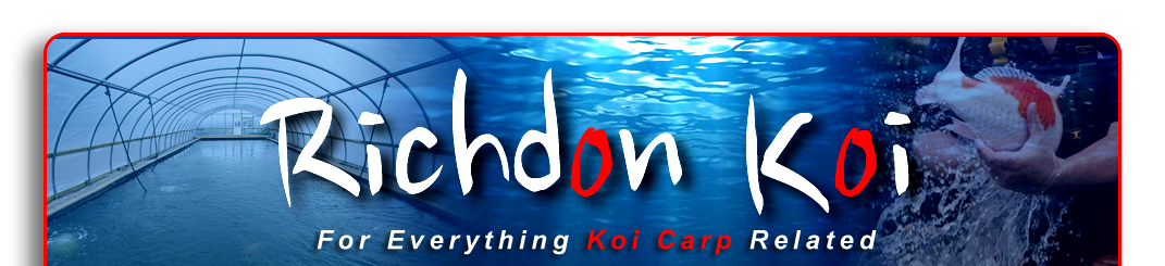 Richdon Kio Online Shop Koi Carp Supplies