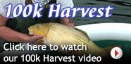 Click here to watch our 100k Harvest video